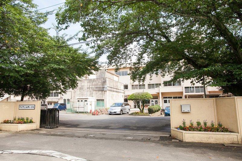 ケヤキの大木が見守る、新生「阿見町立本郷小学校」